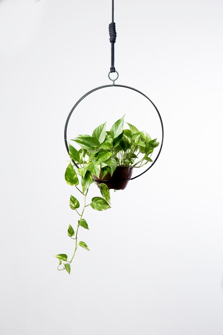 Galvanized Garland - Circular, CONTEMPORARY PLANT SUPPORT For Sale