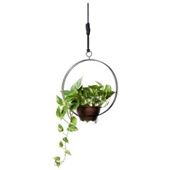 Garland - Circular, CONTEMPORARY PLANT SUPPORT