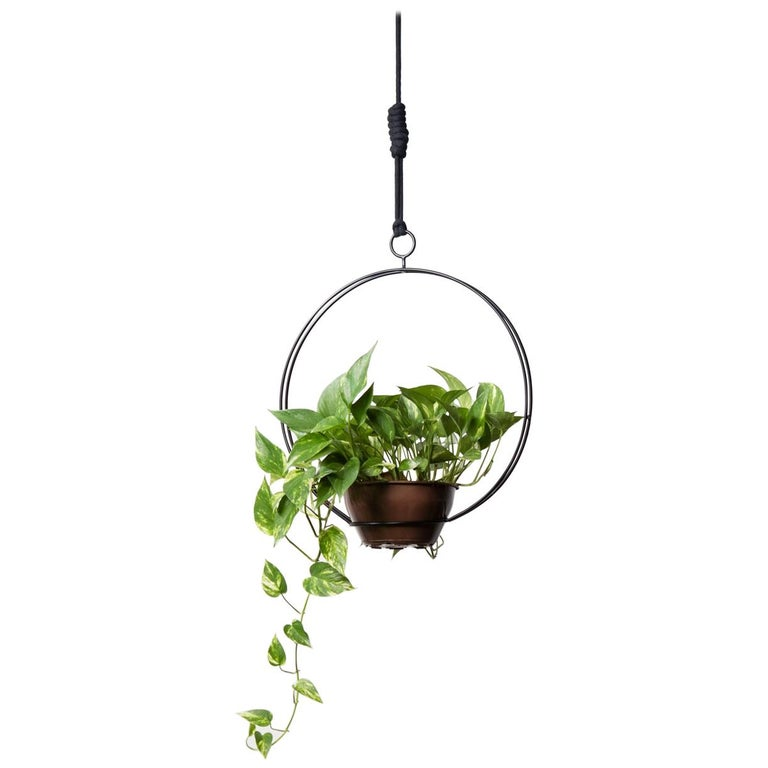 Garland - Circular, CONTEMPORARY PLANT SUPPORT For Sale