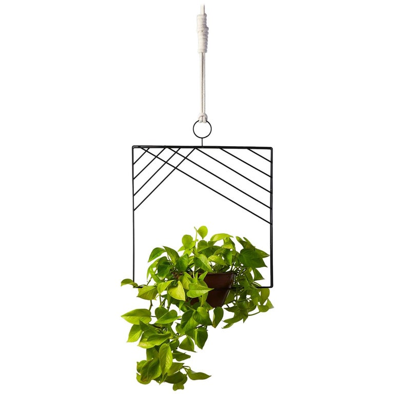 Garland - Square, CONTEMPORARY PLANT SUPPORT For Sale