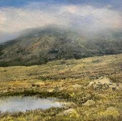 Fairy Pools Original miniature landscape painting Contemporary Impressionism