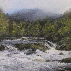 The Illusive Salmon - original landscape contemporary 21st century painting