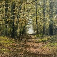 Walk Through Woods miniature landscape painting Contemporary Impressionism