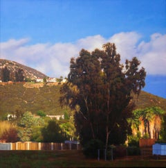 LATE AFTERNOON, RAMONA, CA, hyper-realistic landscape, sunny day, california