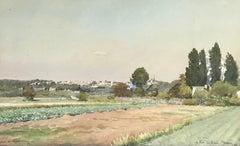 Countryside landscape