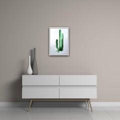 Gavin Dobson, Cactus, Watercolour, Affordable Art