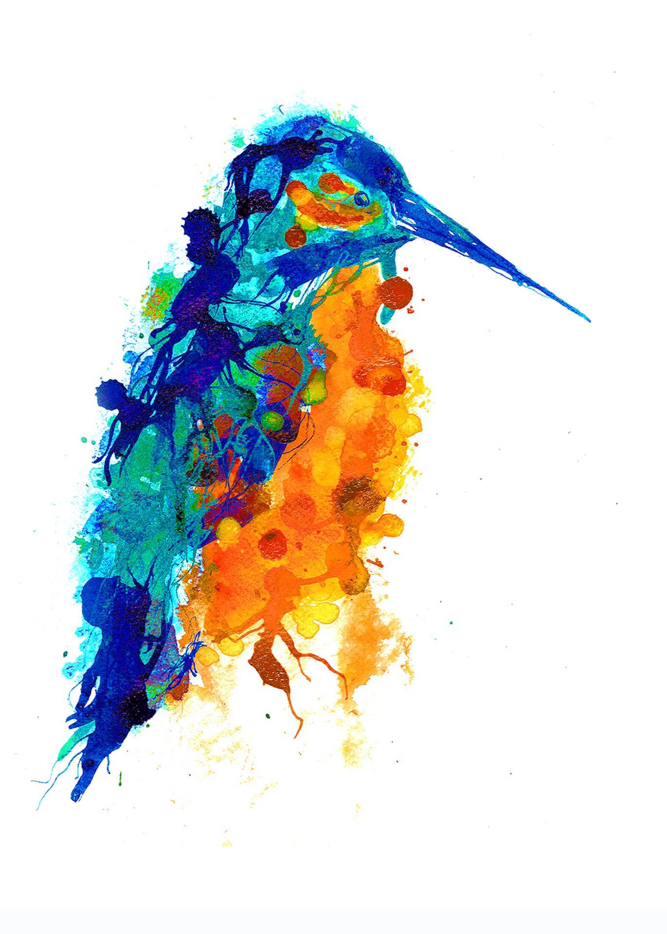 Gavin Dobson, Kingfisher, Limited Edition Print, Animal Art, Affordable Art