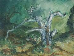 Oak Tree, Pacific Grove
