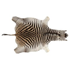 Genuine Large African Burchell Zebra Skin