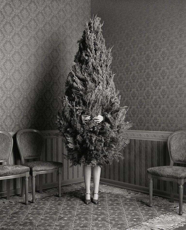 Geof Kern Portrait Photograph - woman as a tree