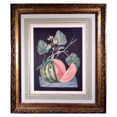 George Brookshaw Engraving of a Melon, Plate Lxviii, Polinac, Pomona Britannica