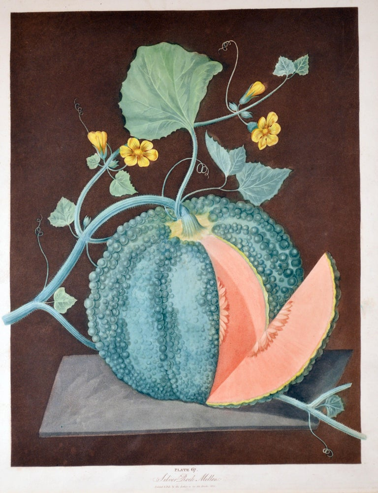 19th Century George Brookshaw Pair of Engravings of Melons, Plates 66 and 67
