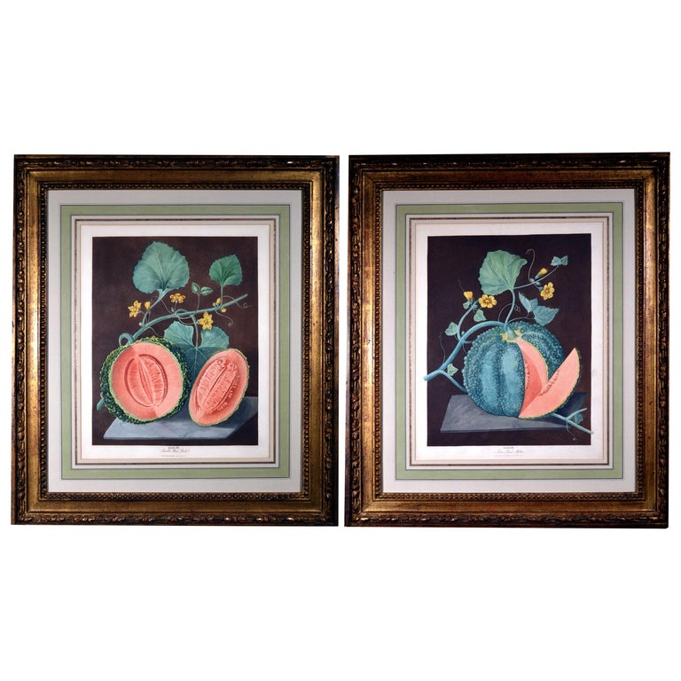 George Brookshaw Pair of Engravings of Melons, Plates 66 and 67