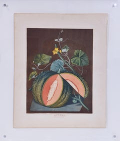 George Brookshaw, A Pair of Melons, aquatints with stipple-engraving, 1812