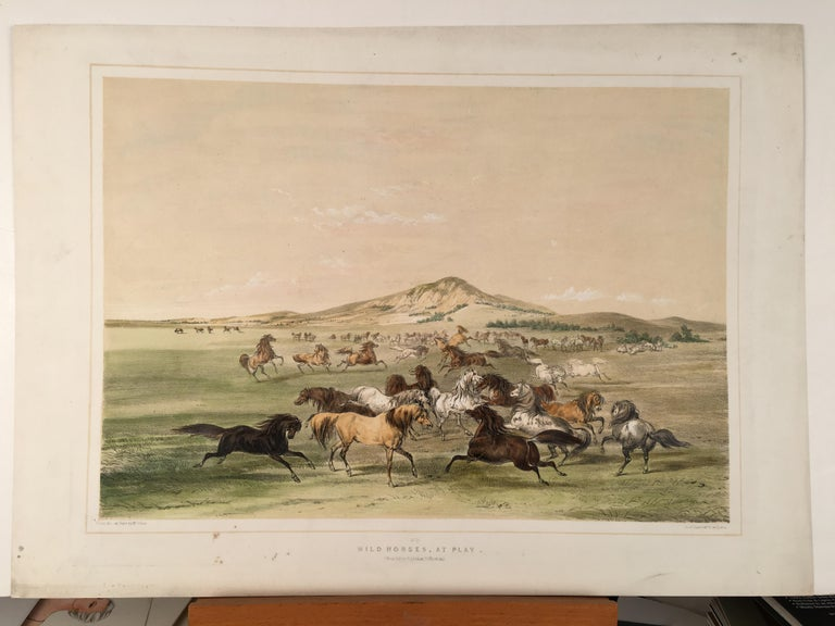 George Catlin Landscape Print - Wild Horses, At Play