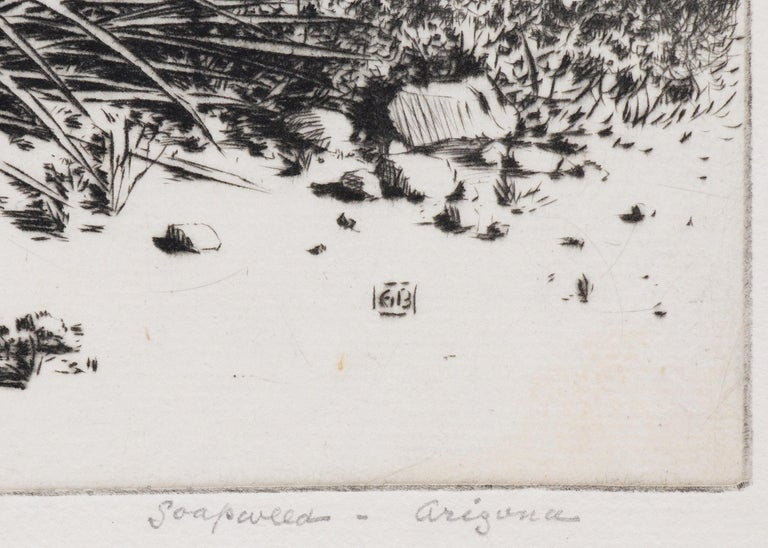 Soapweed, Arizona (no. 2); edition of 40 (original etching from the Desert Set) - American Realist Print by George Elbert Burr
