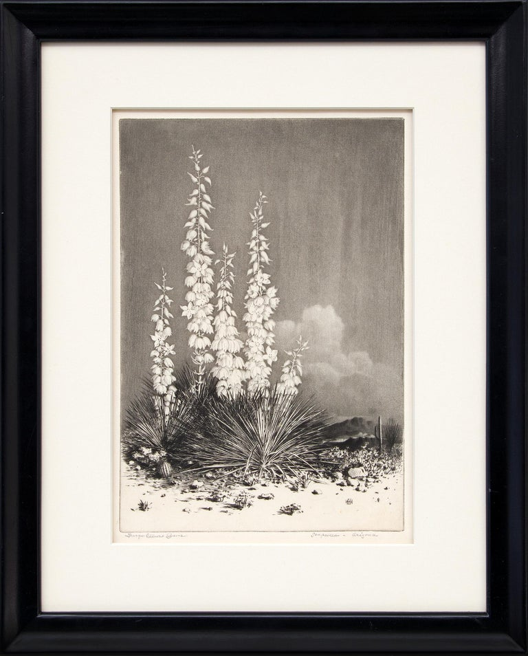 George Elbert Burr Landscape Print - Soapweed, Arizona (no. 2); edition of 40 (original etching from the Desert Set)