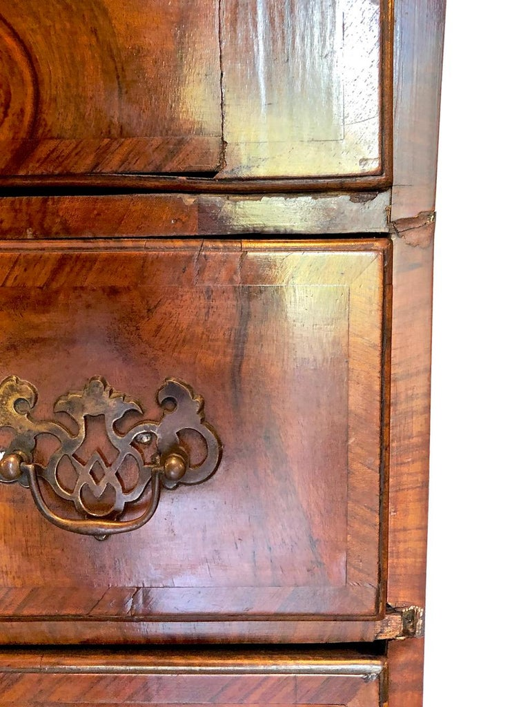 George I Burr Walnut Chest of Drawers, circa 1720-1730 For Sale 4