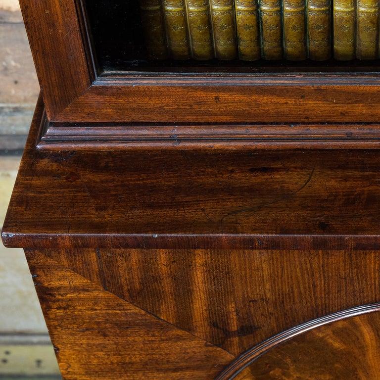 George III Mahogany Bookcase For Sale 13