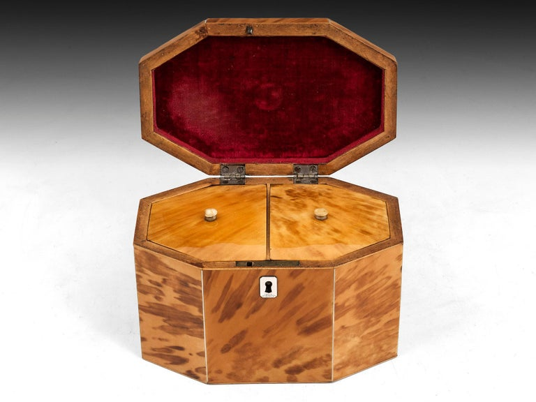 18th Century and Earlier George III Period 18th Century Octagonal-Shaped Blonde Tortoiseshell Tea Caddy For Sale