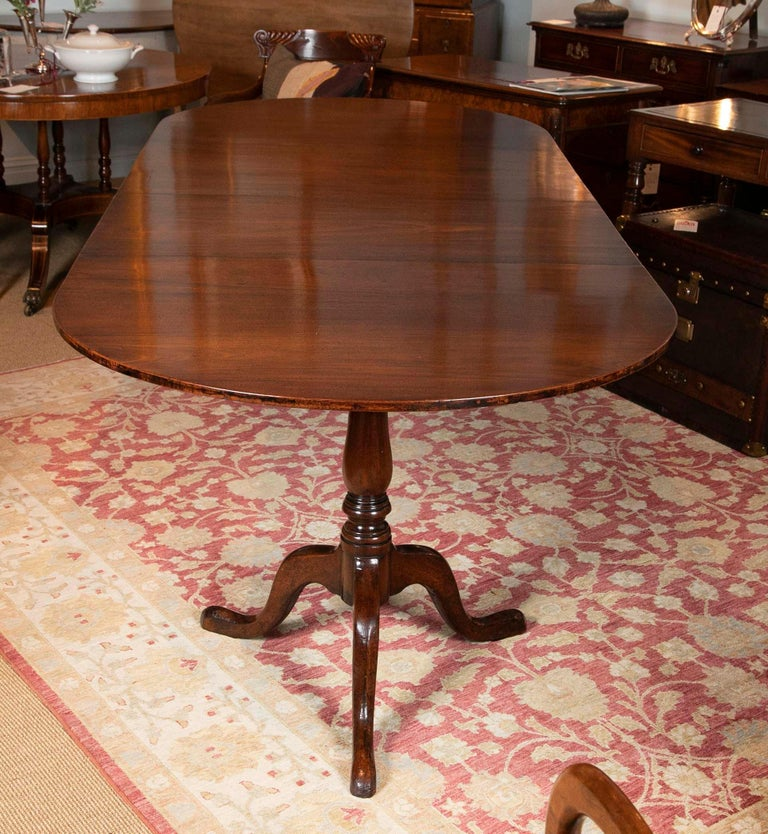 George III Period Mahogany Twin Pedestal Dining Table For Sale 4