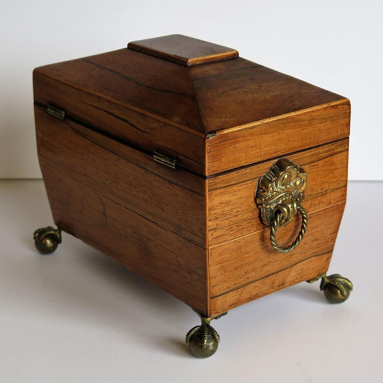 George III Tea Caddy Rosewood with Boxwood edges on Ball and Claw Feet For Sale 3
