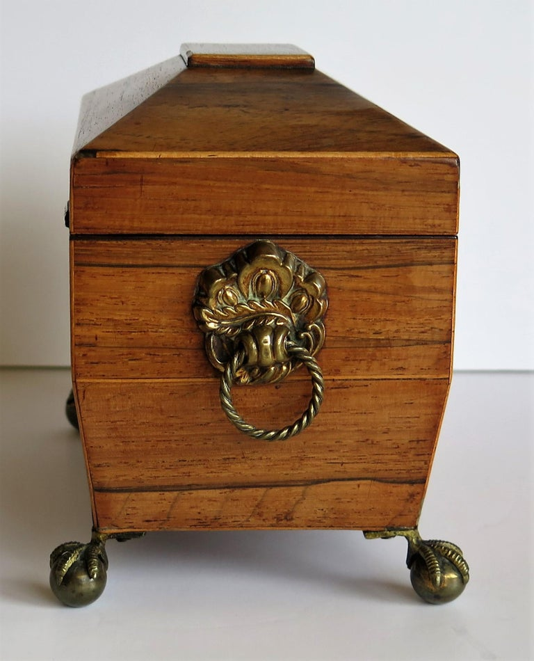 George III Tea Caddy Rosewood with Boxwood edges on Ball and Claw Feet For Sale 4