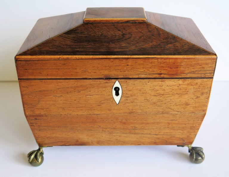 George III Tea Caddy Rosewood with Boxwood edges on Ball and Claw Feet For Sale 5