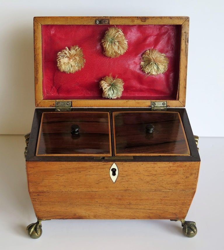 George III Tea Caddy Rosewood with Boxwood edges on Ball and Claw Feet For Sale 7