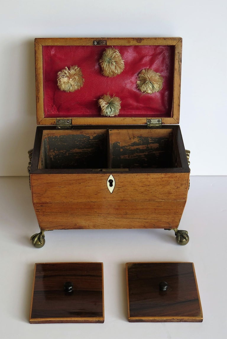 George III Tea Caddy Rosewood with Boxwood edges on Ball and Claw Feet For Sale 8