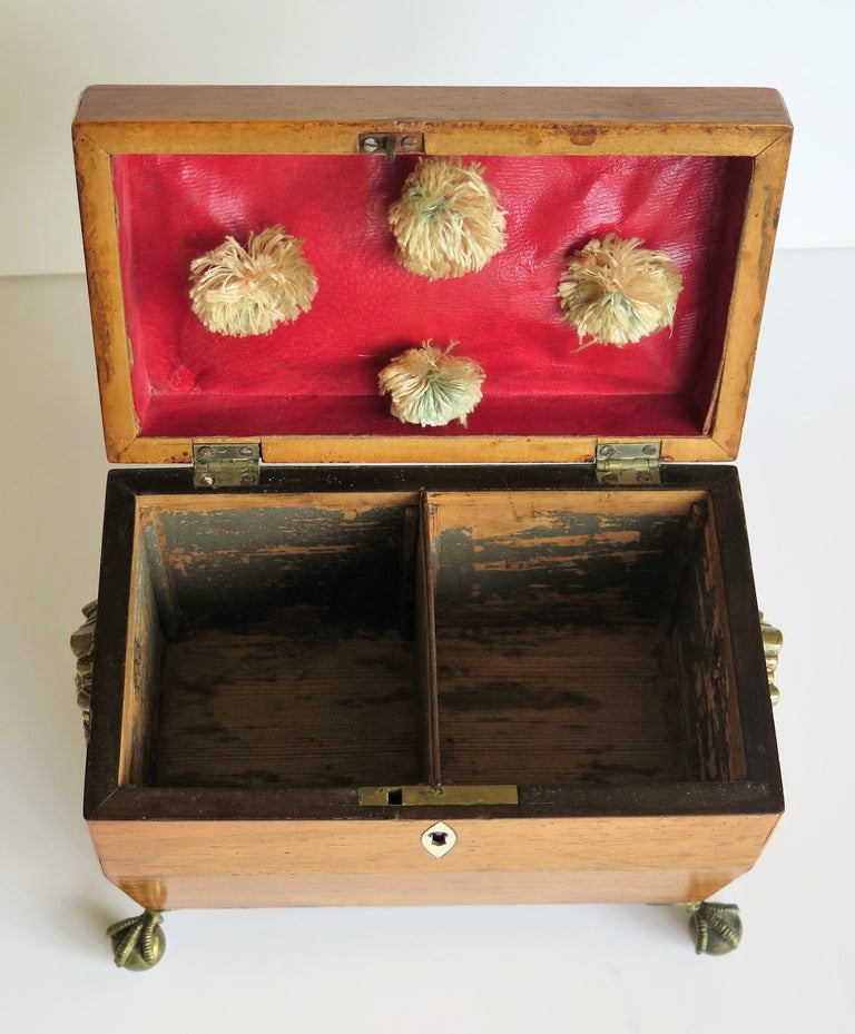 George III Tea Caddy Rosewood with Boxwood edges on Ball and Claw Feet For Sale 9