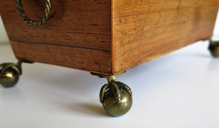 George III Tea Caddy Rosewood with Boxwood edges on Ball and Claw Feet For Sale 11