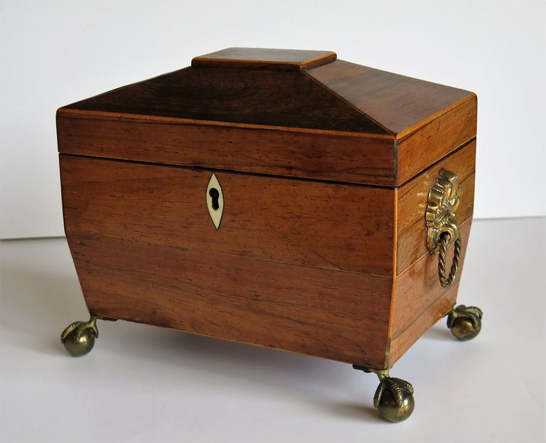English George III Tea Caddy Rosewood with Boxwood edges on Ball and Claw Feet For Sale