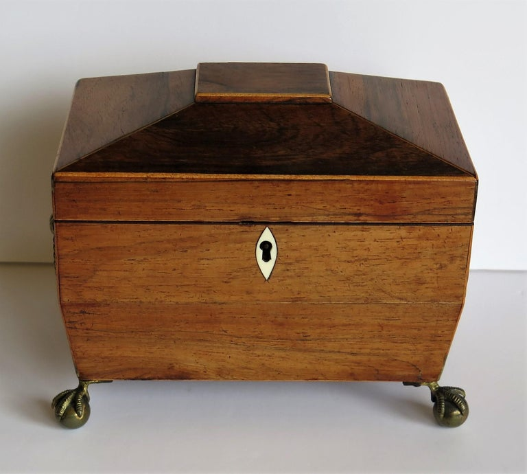 George III Tea Caddy Rosewood with Boxwood edges on Ball and Claw Feet In Good Condition For Sale In Lincoln, Lincolnshire