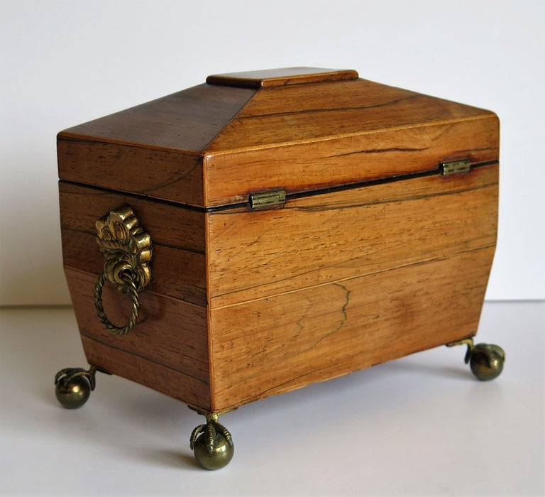 Brass George III Tea Caddy Rosewood with Boxwood edges on Ball and Claw Feet For Sale