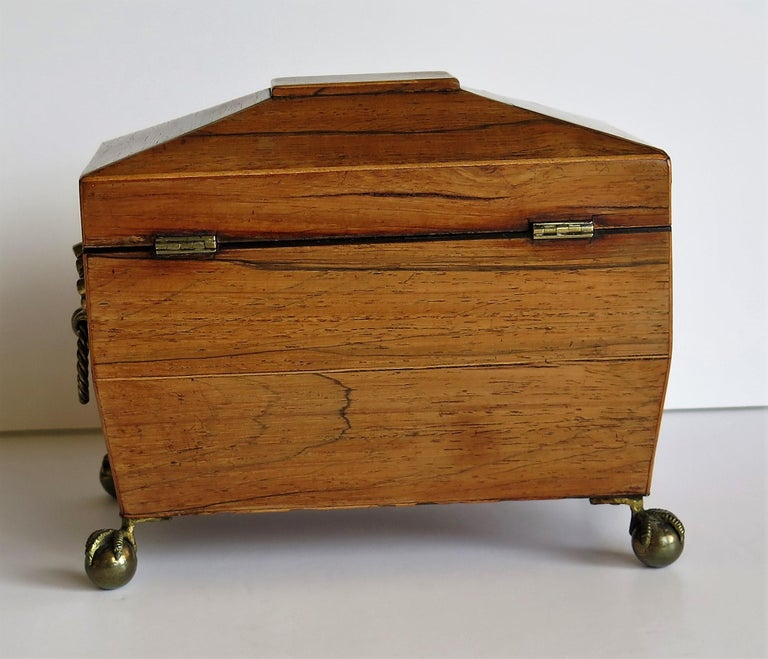 George III Tea Caddy Rosewood with Boxwood edges on Ball and Claw Feet For Sale 1