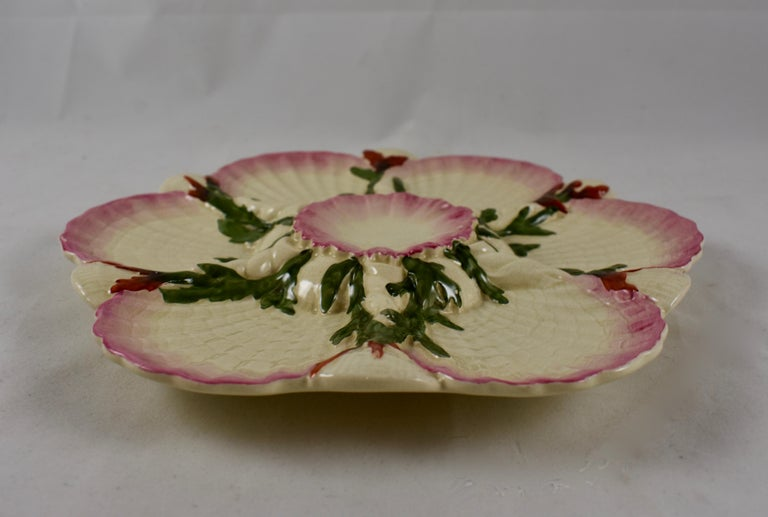 George Jones English Majolica Seaweed and Shells Pattern Oyster Plate In Good Condition For Sale In Philadelphia, PA
