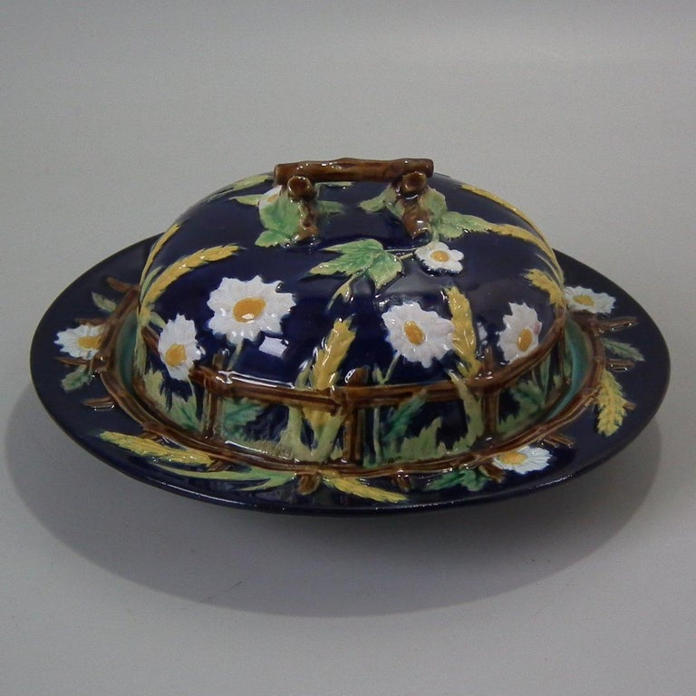 George Jones Majolica muffin dish with cover which features a picket fence, daisies, corn, brambles and a twig handle. Cobalt blue ground version. Coloration: white, ochre, green, are predominant. Impressed and painted marks to the reverse.