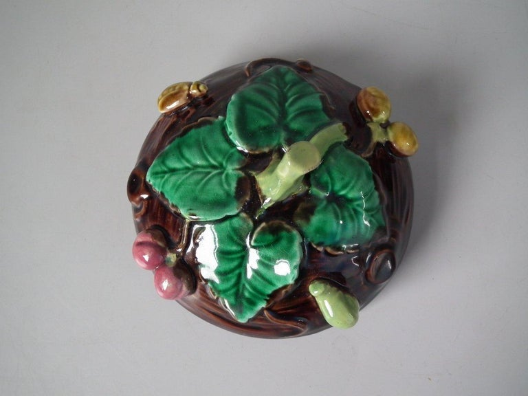 George Jones Majolica Insect Pot and Cover For Sale 14