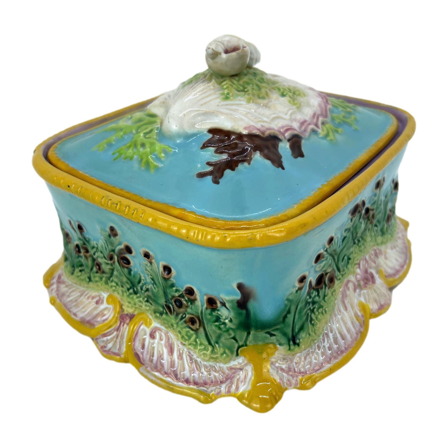 George Jones Majolica Sardine Box with Shells and Seaweed, English, ca. 1867