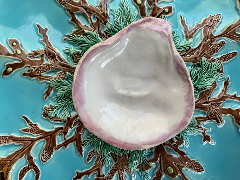George Jones Majolica 10-ins turquoise blue eight well oyster plate, English, circa 1874, with various seaweeds on a turquoise glazed ground, with a raised naturalistic oyster shell glazed in white, with rare pink glazed border, the reverse with