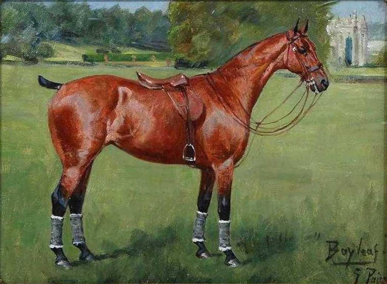 George Paice 'Bayleaf' Equestrian Horse Painting - Brown Animal Painting by George Paice
