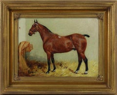 George Paice 'Robin' Equestrian Horse Painting