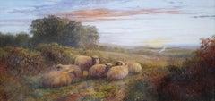 Sheep in Landscape at Dusk