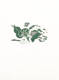 Le liseron vert