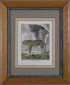 """La Panthere Femelle"" Female Panther Cat Animal"