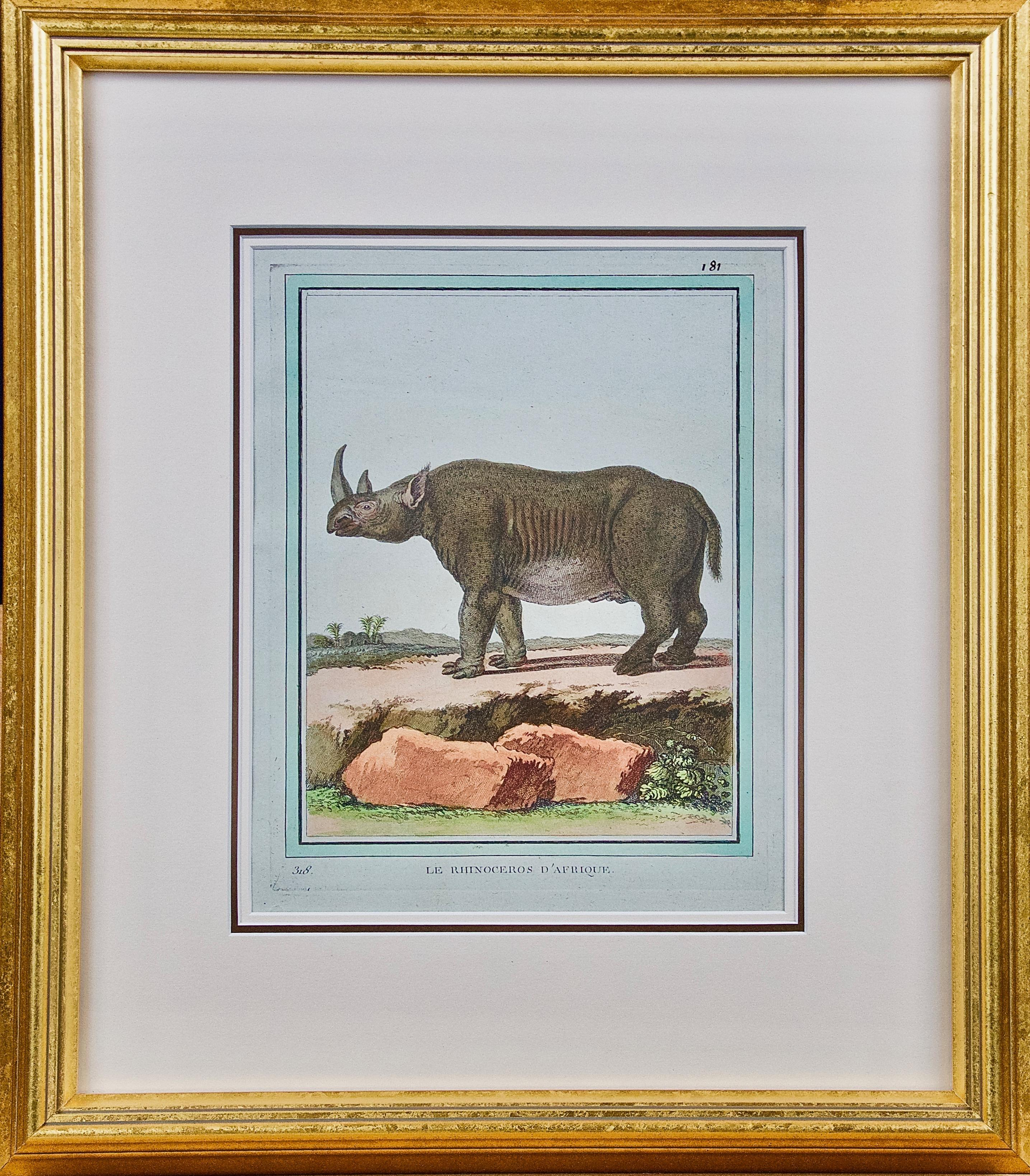"""""""Le Rhinoceros D'Afrique"""" an 18th Century Hand Colored Engraving of a Rhinoceros"""