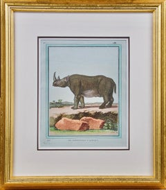"""Le Rhinoceros D'Afrique"" an 18th Century Hand Colored Engraving of a Rhinoceros"