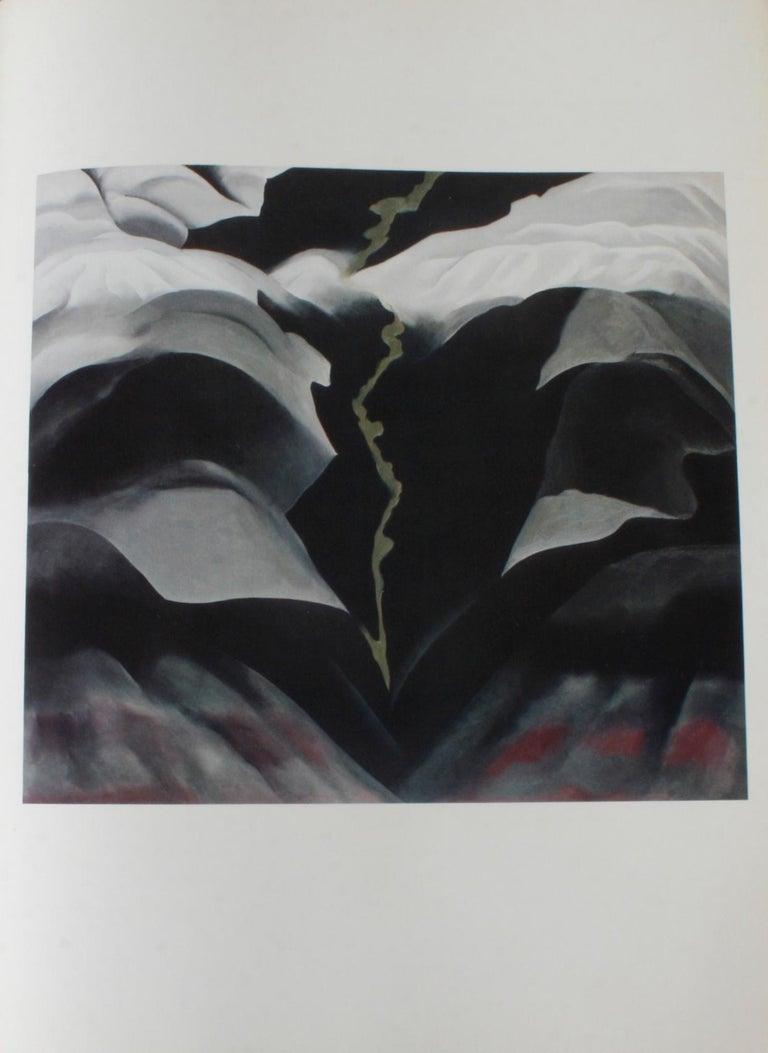 Georgia O'Keeffe Studio Book For Sale 4