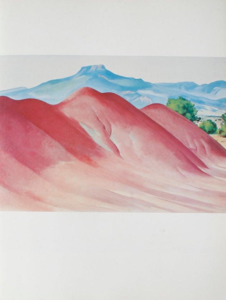Georgia O'Keeffe Studio Book For Sale 2